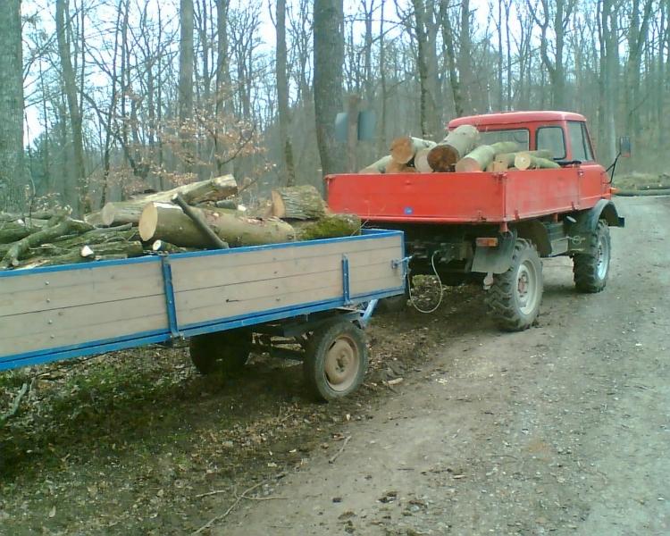 Holzaktion0307